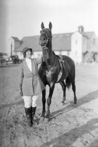 horse show fair barn 4