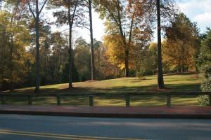 Fall in the Arboretum