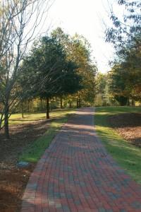 Walking to Pavilion