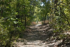 old bridle path