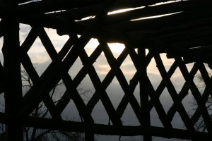pergola at dusk